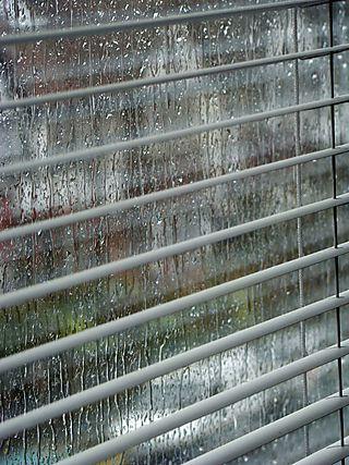 Rain 2