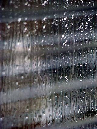 Rain 4