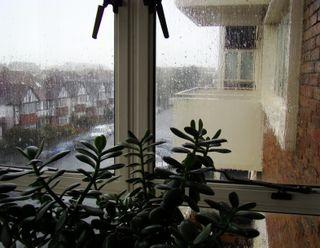 October 5 rain 1