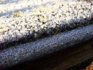 Dec7frost