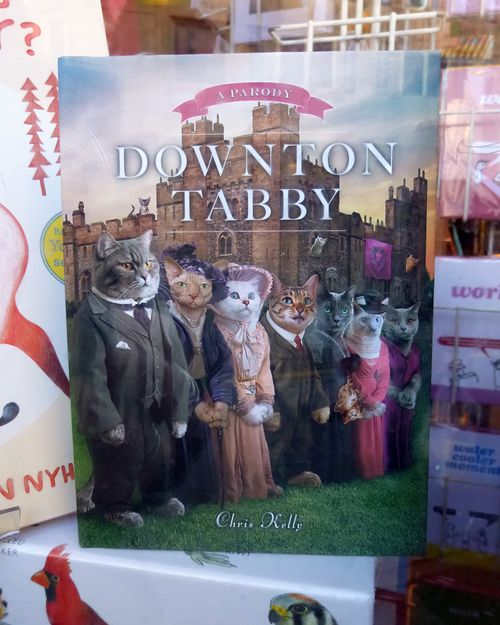 Downton_tabby