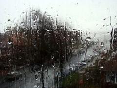 March_rain_3