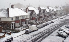 Snow_1104