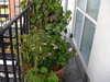 Balcony_right