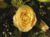 Birthday_flowers_2